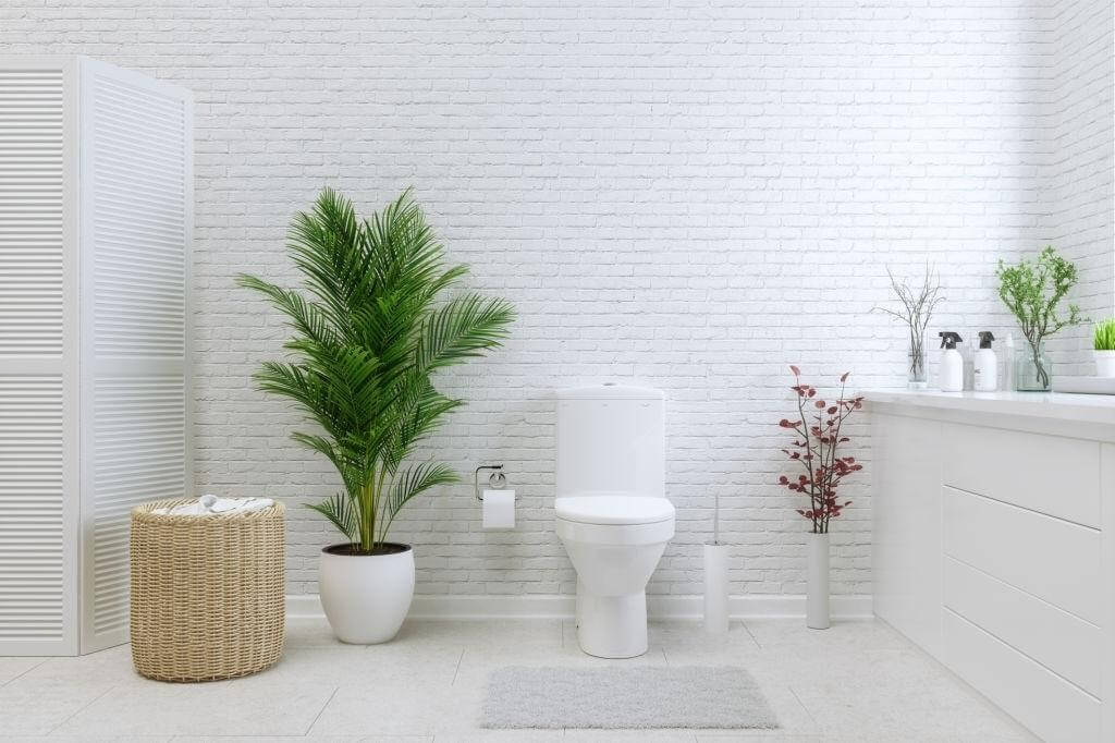 Rear outlets toilets VS Wall-mounted toilets